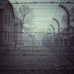 Auschwitz. Photo prise le 20 Décembre 2013. Crédit : Sixtwelve