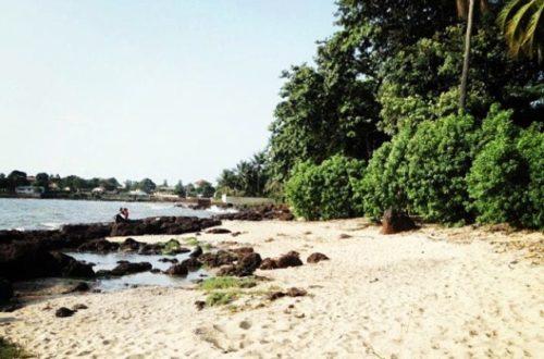 Article : Coup de foudre à Conakry (1)
