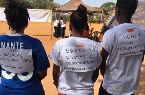 Article : Déjouer les pièges de l'institutionnalisation de l'activisme